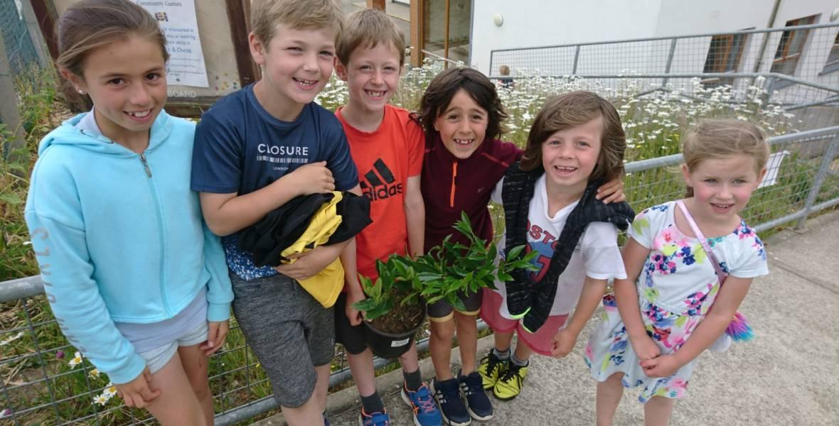 Garden Day Brittas Bay National School